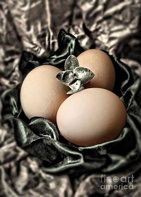 Photograph - Classy Easter Eggs  by Danuta Bennett