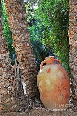 Clay Jar By Palm Tree Art Print by Sami Sarkis