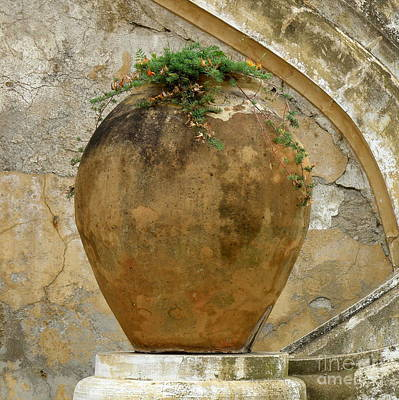 Art Print featuring the photograph Clay Pot by Lainie Wrightson