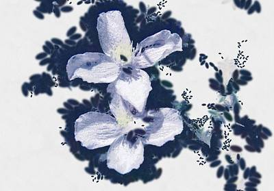 Clematis In Blue Art Print