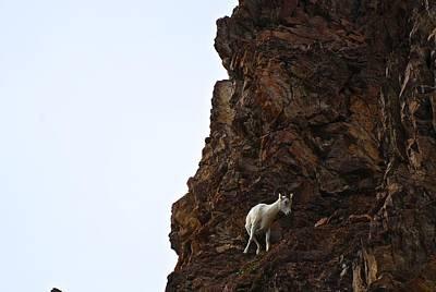 Photograph - Cliff Hanger by Eric Tressler
