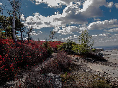 Photograph - Clifftop Splendor by Jim DeLillo