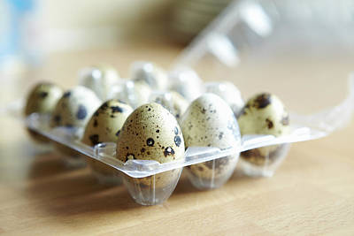 Close Up Of Carton Of Quail Eggs Art Print by Debby Lewis-Harrison