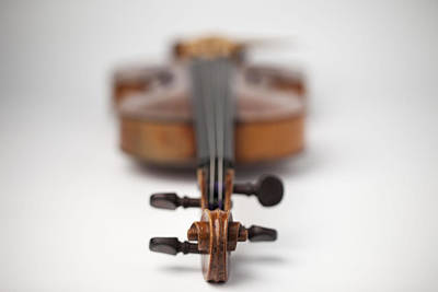 On Violin Photograph - Close Up Of Violin by Foto Bureau Nz Limited