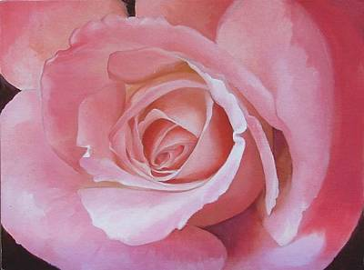 Close Up Painting Of Pink Rose Art Print