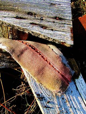 Photograph - Cloth And Wood by Todd Sherlock