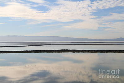 Cloud Reflections On Salt Marsh At Coyote Hills Regional Preserve California . 7d10968 Art Print by Wingsdomain Art and Photography