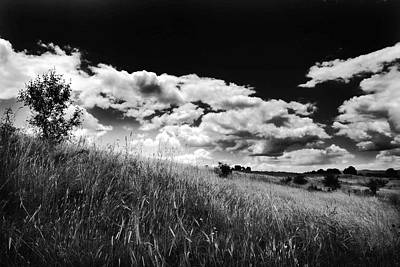 Photograph - Clouds  by Cliff Norton