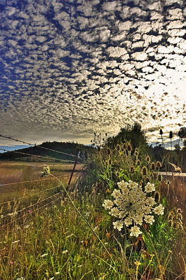 Landscape Photograph - Clouds Gone Wild by Tyra  OBryant