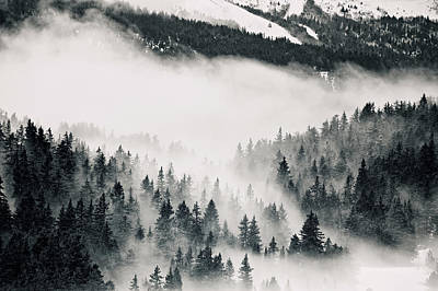 Clouds Moving Through Forest In French Alps Art Print by Philipp Klinger
