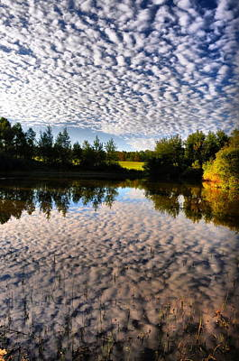 Photograph - Cloudy Pond  by Emily Stauring