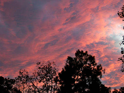 Photograph - Cloudy Sunset by Judy Wanamaker