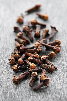 Dried Photograph - Cloves by Elena Elisseeva