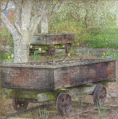 Photograph - Coal Car Flowers Squared by Cindy Wright