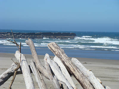 Beaches And Waves Rights Managed Images - Coastal Driftwood art prints Blue Sky Ocean Waves Royalty-Free Image by Baslee Troutman