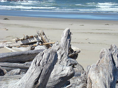 Coastal Driftwood Art Prints Blue Waves Ocean Art Print by Baslee Troutman