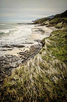 Photograph - Coastal Grass by Heather Applegate