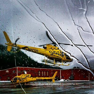 Helicopter Photograph - Coastal Helicopter Juneau Ak by Dan Piraino