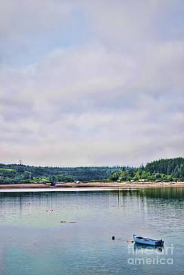 Photograph - Coastal Life by Traci Cottingham