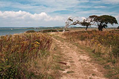 Coastal Path Art Print by Shirley Mitchell