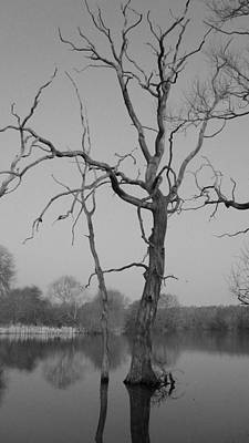 Photograph - Coate Water by Michael Standen Smith