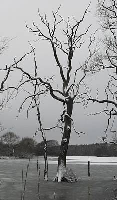 Photograph - Coate2 by Michael Standen Smith