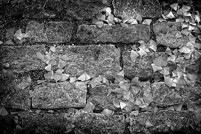 Photograph - Cobblestone Streets Of Asheville by Gray  Artus