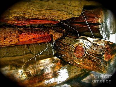 Cobwebs Art Print by Tina Slee
