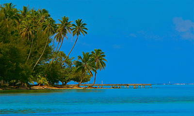 Art Print featuring the photograph Coconuts Anyone by Eric Tressler