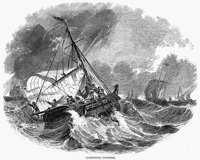 Cod Fishing, 1876 Art Print