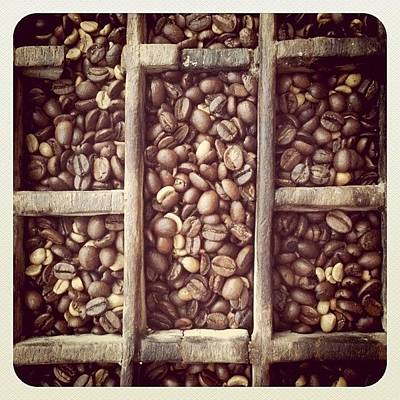 Wallpaper Wall Art - Photograph - Coffe Beans by Isabel Poulin