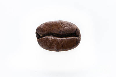 Photograph - Coffee Bean by Michel Soucy
