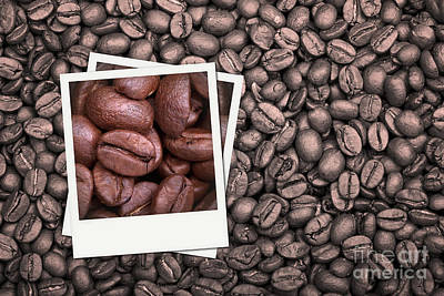 Element Photograph - Coffee Beans Polaroid by Jane Rix