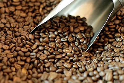 Bangladesh Photograph - Coffee Beans by Proudly brought to you by Hasin Hayder