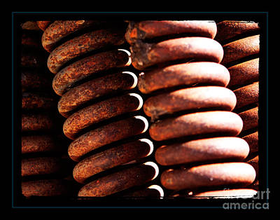 Tools Photograph - Coiled by Robert R Sanders