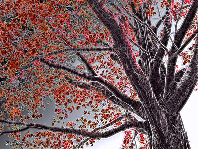 Mixed Media - Cold Autumn by Stephen Younts