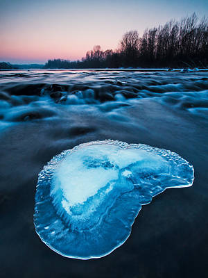Cold Blue Art Print by Davorin Mance