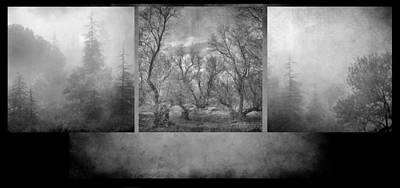 Collage Misty Trees Art Print