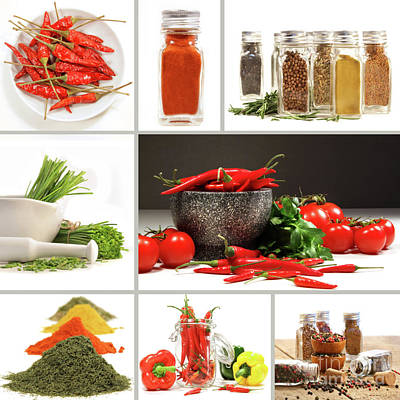 Collage Of Different Colorful Spices For Seasoning Art Print by Sandra Cunningham