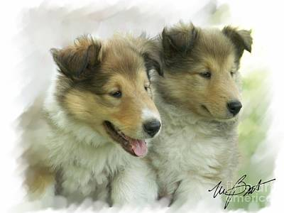 Pups Digital Art - Collie Pups by Maxine Bochnia