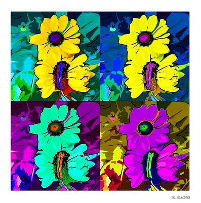 Photograph - Color Flowers by Rob Hans