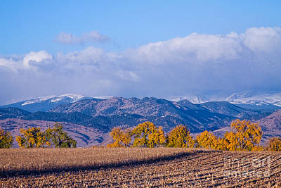 Colorado Autumn Morning Scenic View Print by James BO  Insogna