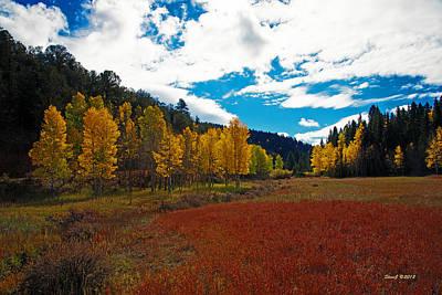 Colorado Mountain Autumn View Art Print by Stephen  Johnson