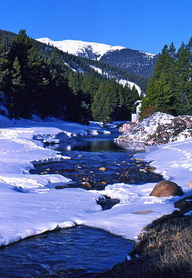 Colorado Mountain Stream Art Print