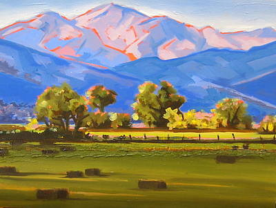Colorado Pasture Art Print