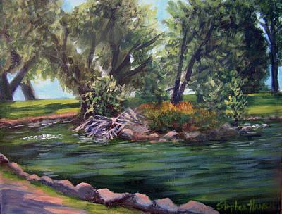 Colorado Pond Art Print by Stephen  Hanson