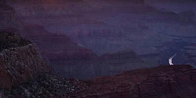 Colorado River At The Grand Canyon Print by Andrew Soundarajan
