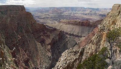 Photograph - Colorado River Grand Canyon by Gregory Scott