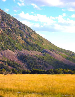 Photograph - Colorado Rockface by Sarah Gayle Carter