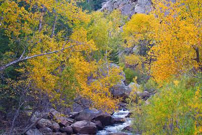 Stream Lanscape Photograph - Colorado Rocky Mountain Autumn Canyon View by James BO  Insogna